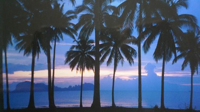 Thaise eilanden Denise Miltenburg