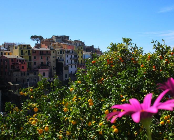 Corniglia dorp Cinque Terre