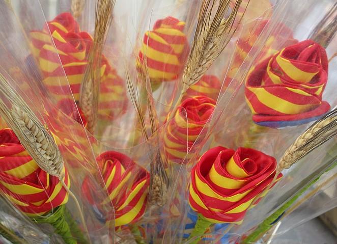 bloemen-catalonie