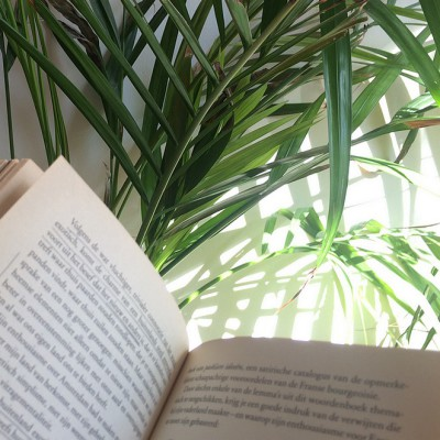 Hét reisboek dat je gelezen moet hebben