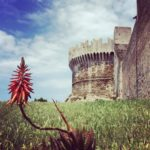 The castle of Populonia From here you have wonderful viewshellip