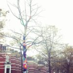 Look at this colorful tree in my neighbourhood Wrapped inhellip