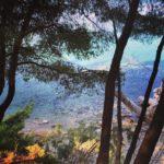Now on my blog hiking and mountainbiking on Halkidiki! Ahellip