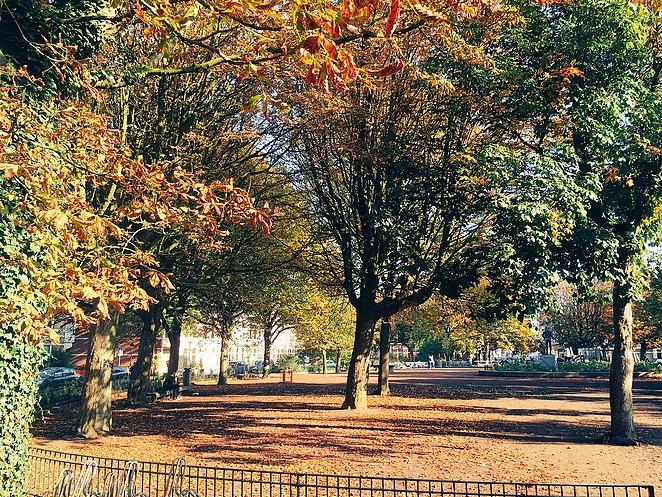 koningsplein-den-haag-herfst