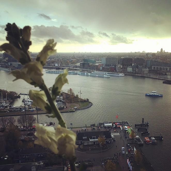 madam-amsterdam-toren