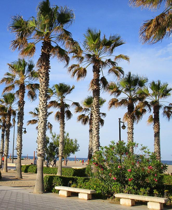 boulevard-strand-Valencia
