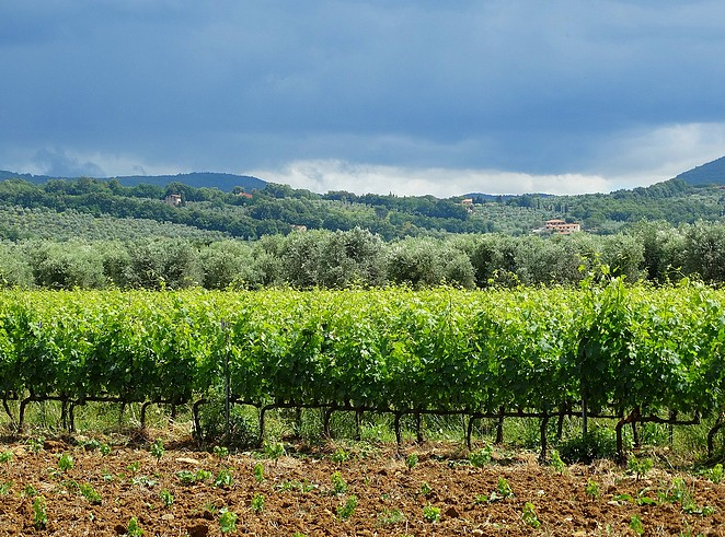 Toscane-Bolgheri