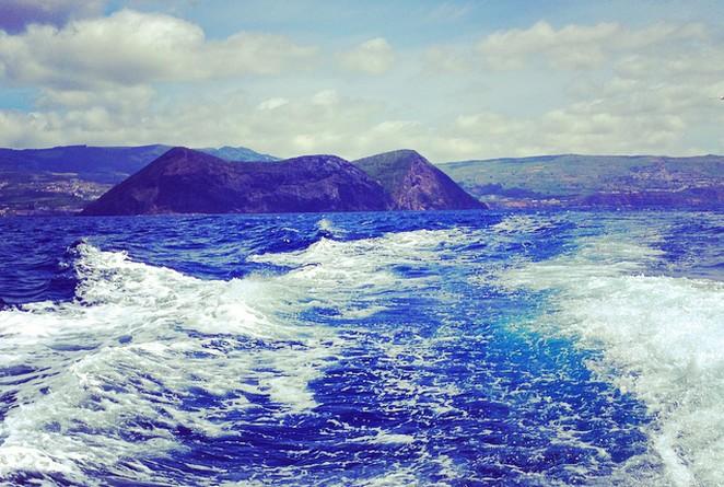 walvissafari-Terceira