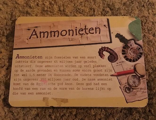 ammonieten