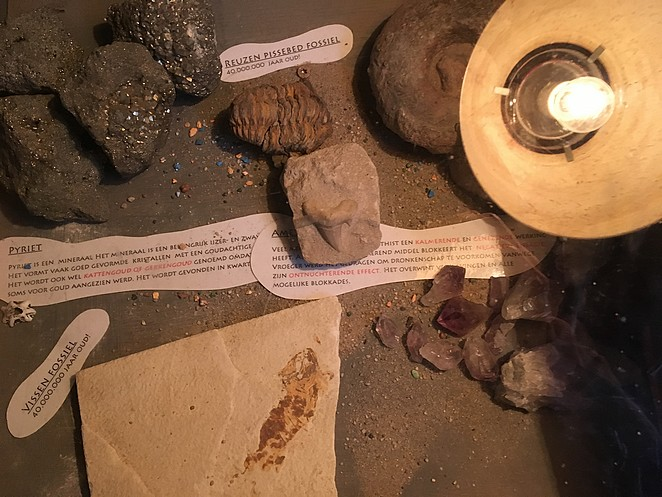 fossielen-speurtocht-Avonturia