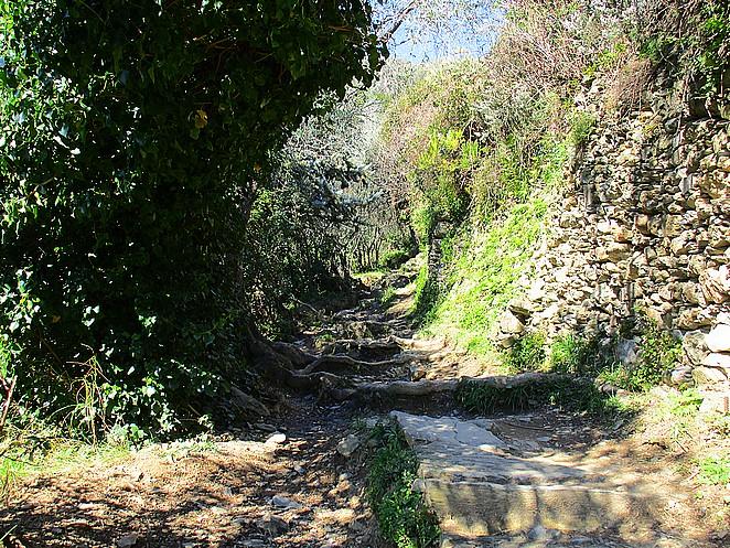 wandelpad-Cinque-Terre