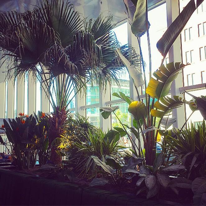Hofhouse, deze week geopend in Den Haag!