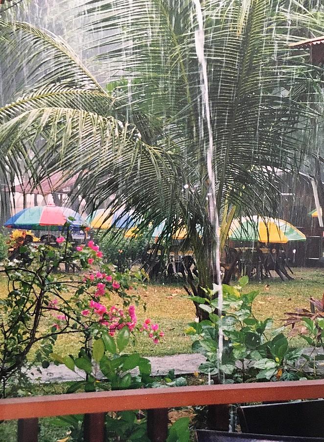 regenseizoen-maleisie