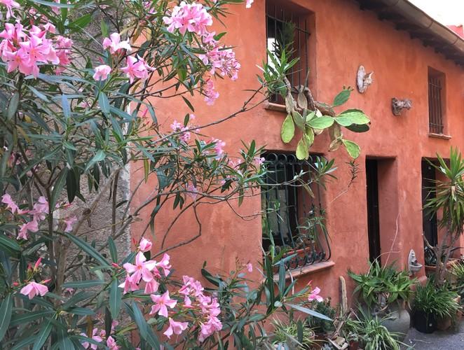 oleander frankrijk