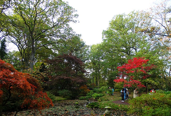 Japanse-tuin