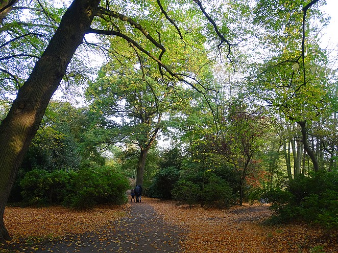 bereikbaarheid-japanse-tuin