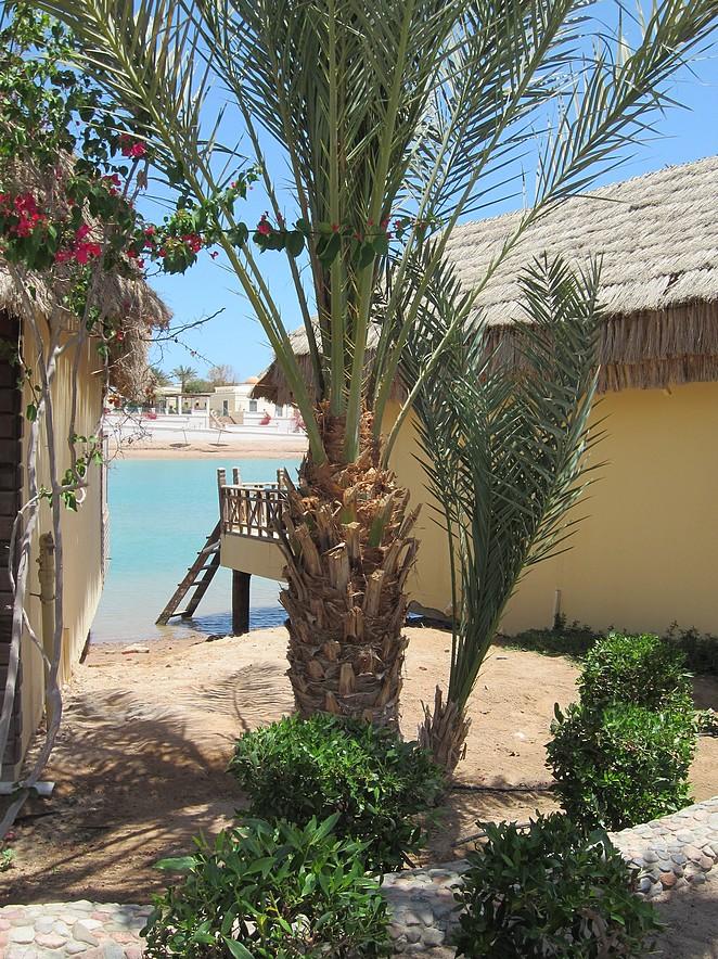 bungalow-aan-zee-in-egypte