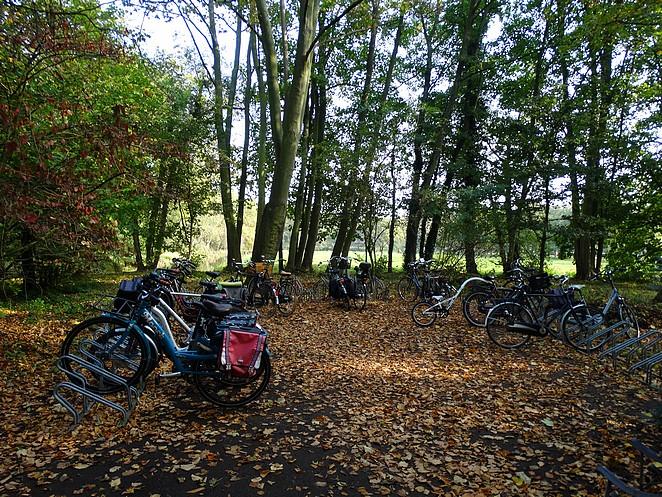 fiets-parkeren-japanse-tuin