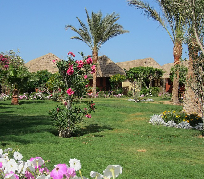 panorama-bungalows-tuinzicht