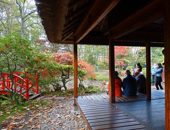 paviljoen-japanse-tuin