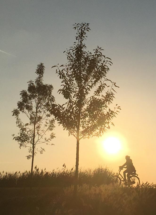 fietsen-in-abcoude