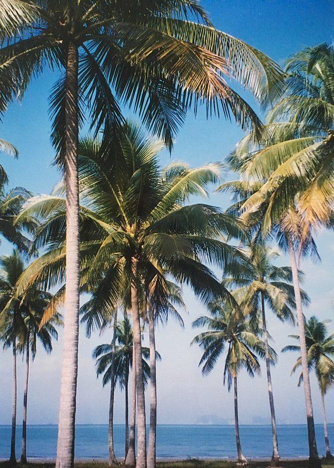 Trang-eilanden