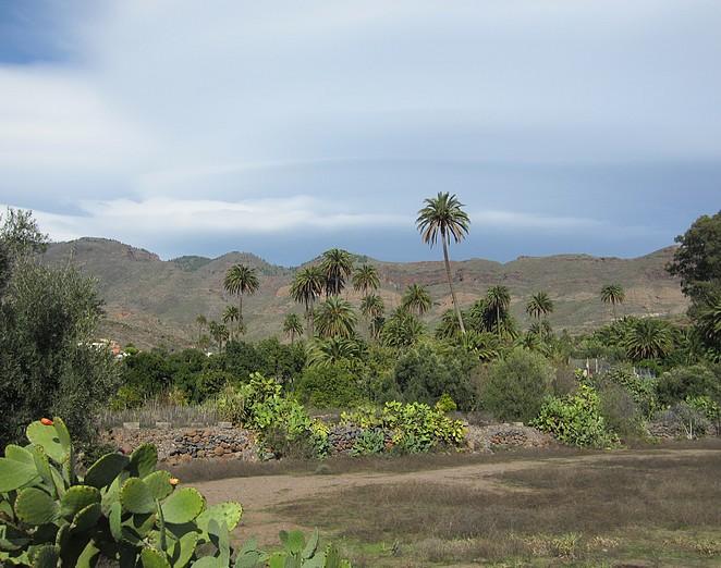 rustige-plekken-canarische-eilanden