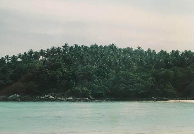 kokospalmen-koh-racha