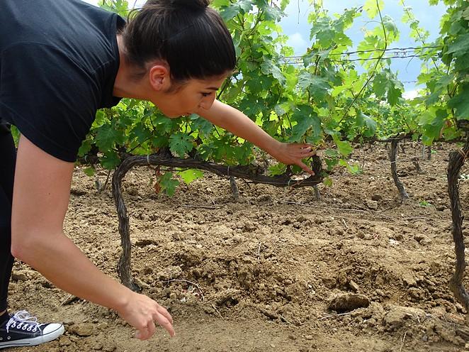vrouw-wijn-toscane