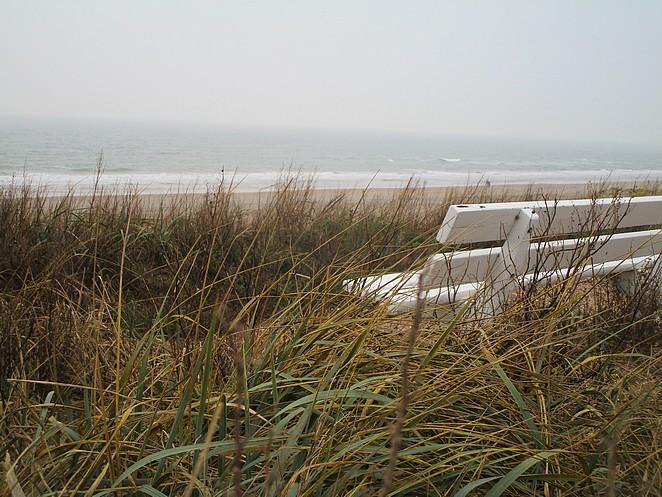 dagje-zandvoort