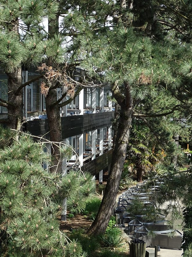 hotel-bos-duinen-rockanje