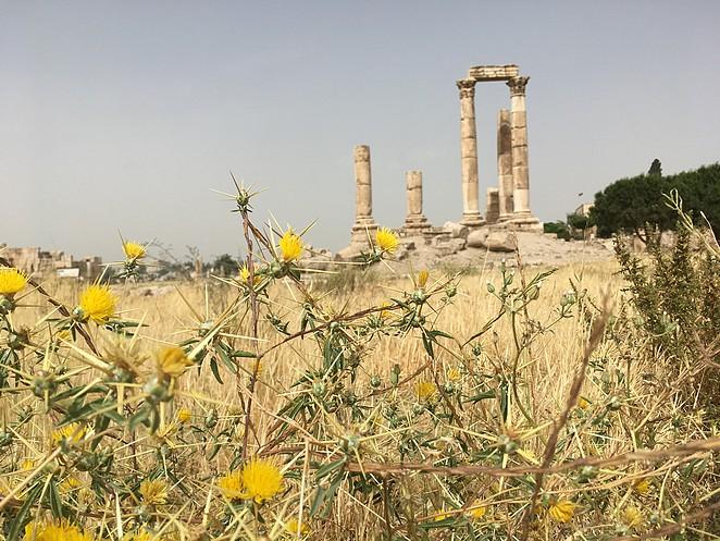 citadel-amman
