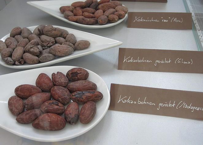 cacaobonen-wenen