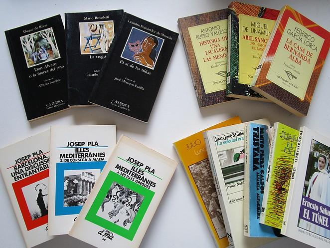 Spaanse en Zuidamerikaanse literatuur, en Catalaanse reisboeken