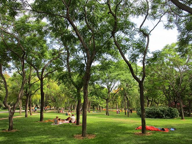 Picknick-Turia-park