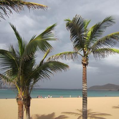Het strand van Las Palmas