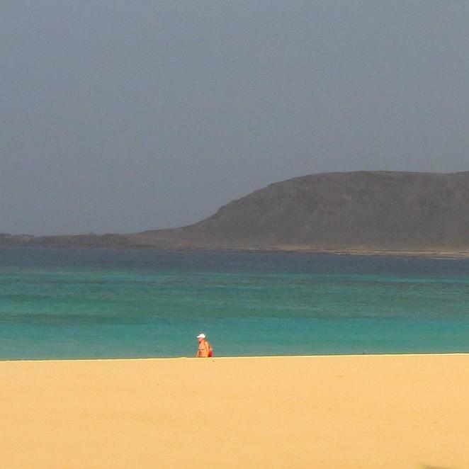 strandwandelaar