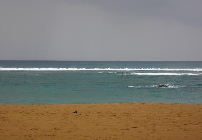 oceaan canarische eilanden