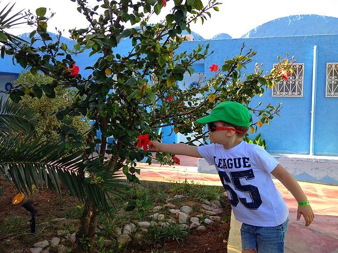 Met kinderen naar Tunesie