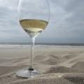 wijn-strand-denhaag