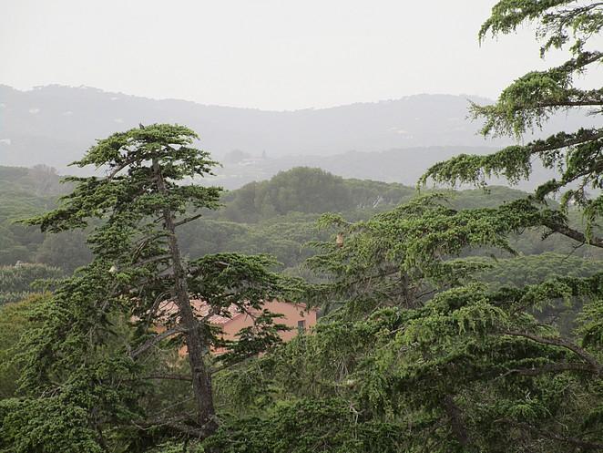 Catalonie-natuur