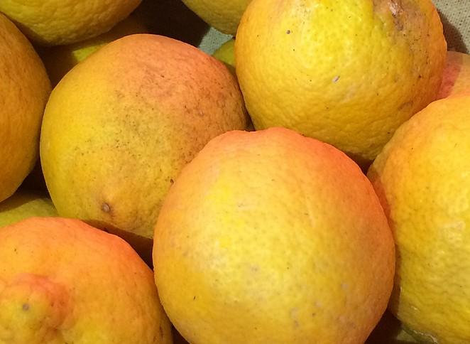 citroen-gozo