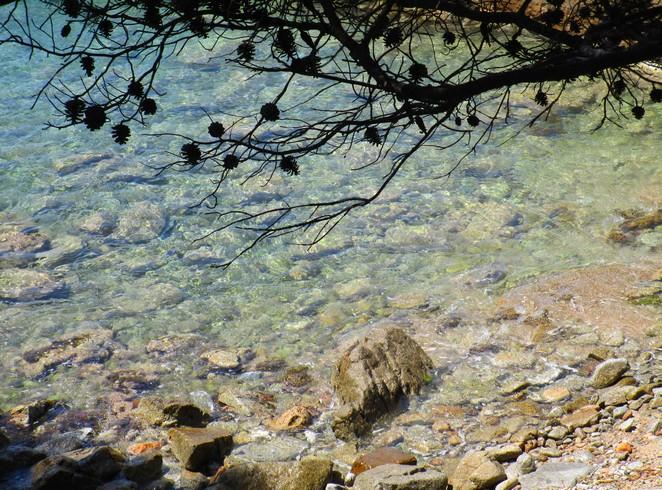 zeewater-cami-de-ronda