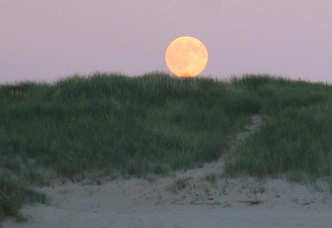 volle-maan-duinen