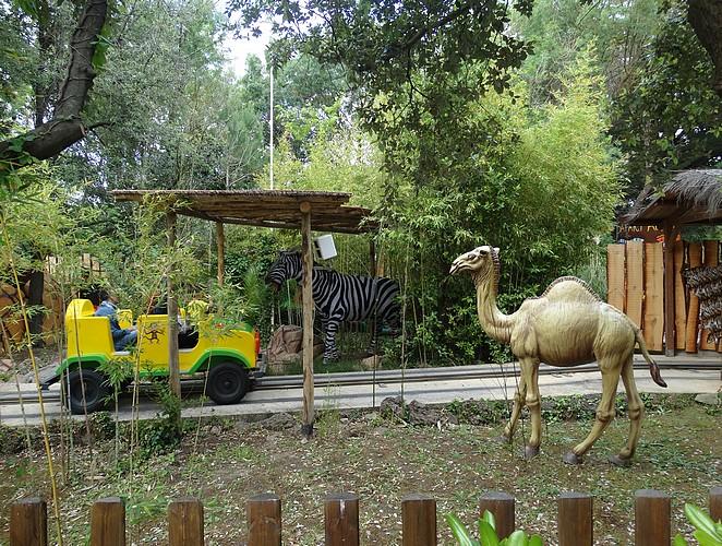 wildlife-toscane