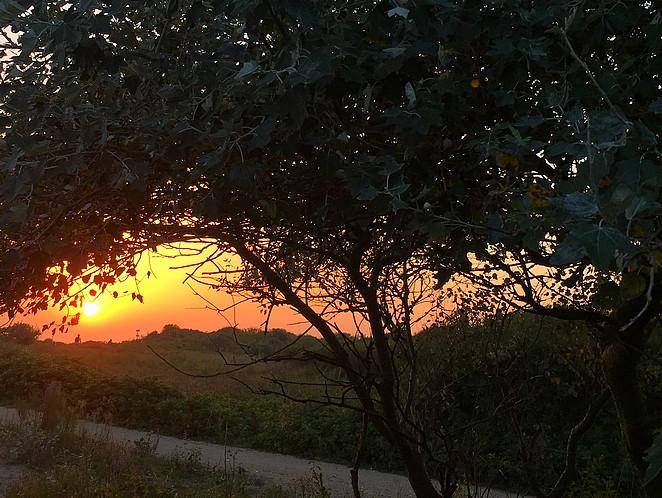 zonsondergang-duinen-den-haag