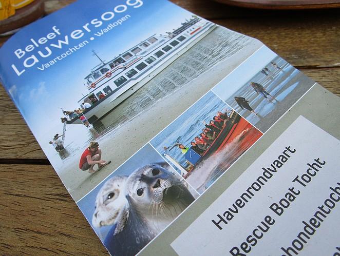wadden-zeehonden