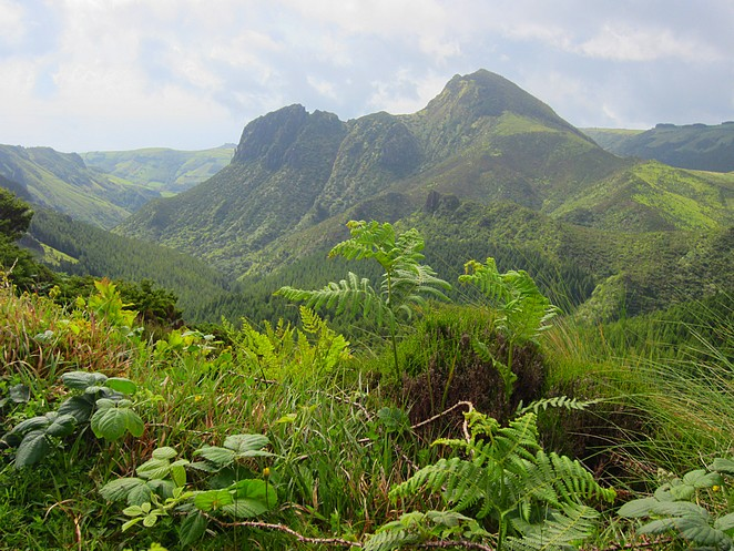 Azoren-binnenland-Flores