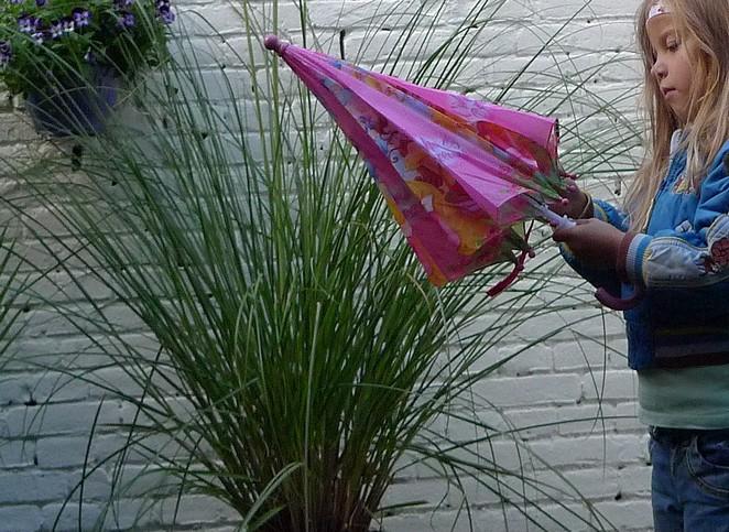 bo-met-paraplu