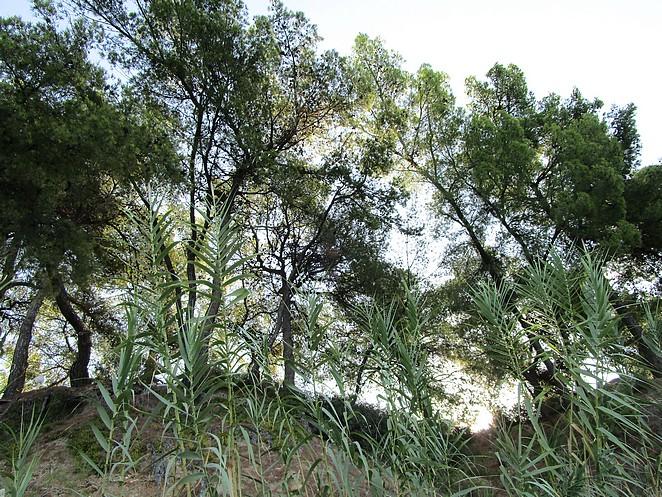 chalkidiki-natuur-actief